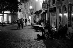 antwerpen_night