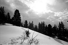 vercors_feb_2009_bw