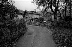 villages_autumn